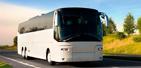 Почему стоит арендовать автобус или микроавтобус в трансферной компании Альбатрос